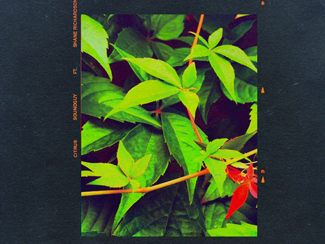 Soundguy Feat. Shane Richardson - Citrus (Audio)