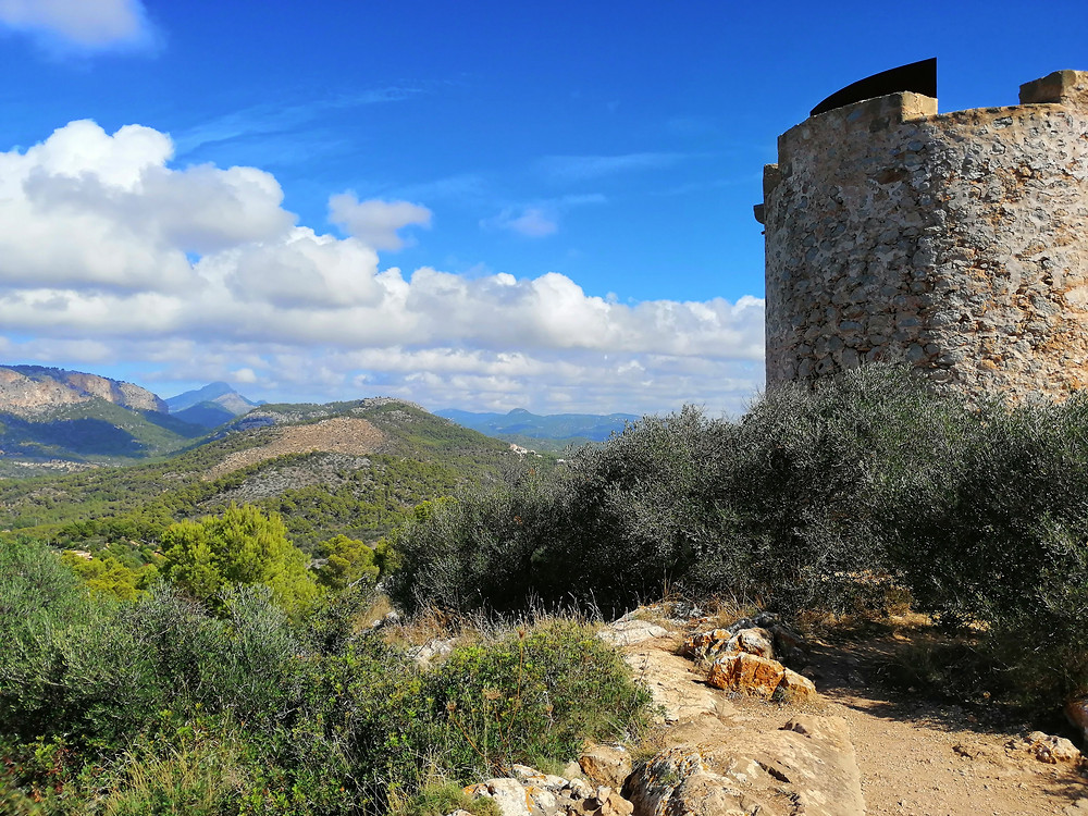 Tower and view