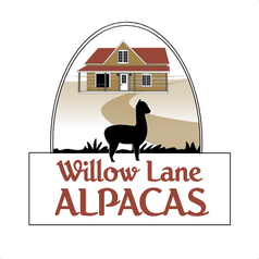 Willow Lane Alpacas