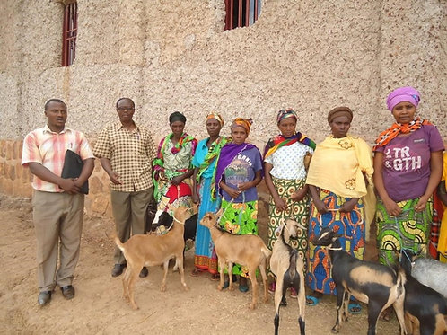 Goat for a Woman with HIV/AIDS