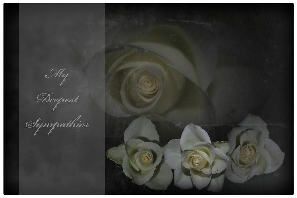 MyDeepestSympathies