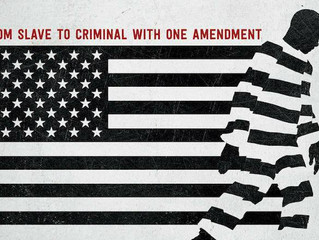 "Review of the Documentary ""13th""..."