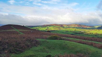Hergest Ridge, Powys, Wales, UK.