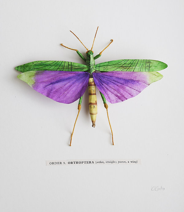 A paper insect Amazon Grasshopper  by artist Kate Kato | Kasasagi