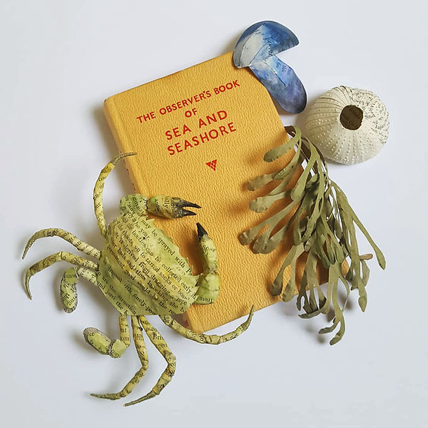 The observer book of sea, paper sculpture by artist Kate Kato | Kasasagi