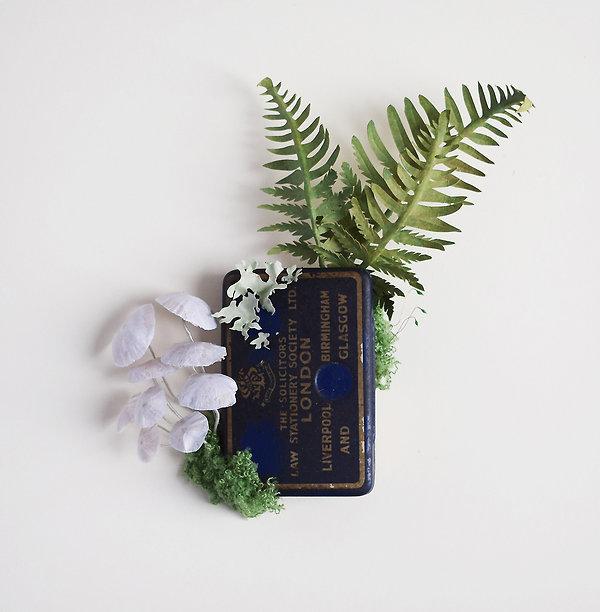 Fungi, mushrooms, fern in a woodland tin, paper sculpture by artist Kate Kato | Kasasagi