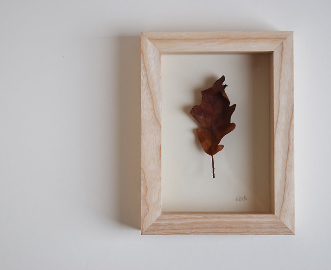 'Study of an Oak Leaf'   2020.