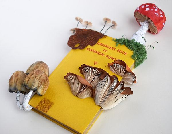 The Observer Book of Common Fungi / mushrooms, paper sculpture by artist Kate Kato | Kasasagi