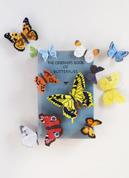 The Observer Book of Butterflies (2017)