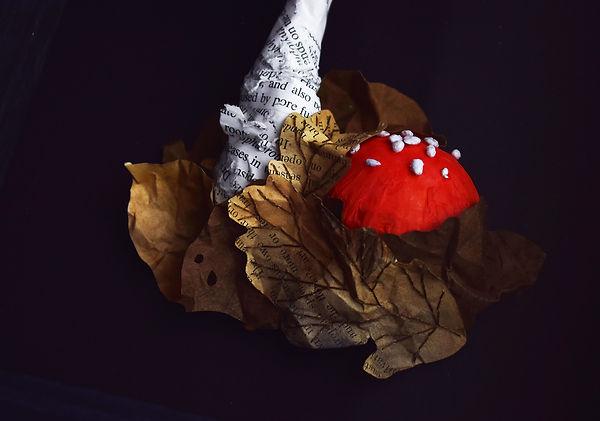Fungi, mushroom specimens - Fly Agaric by artist Kate Kato | Kasasagi