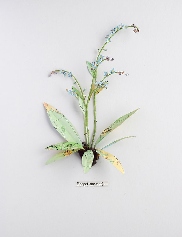 forget-me-not, a botanical sculpture, paper flower by artist Kate Kato | Kasasagi