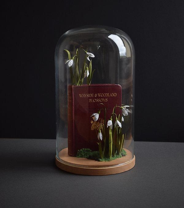Snowdrops, a botanical sculpture, paper flower by artist Kate Kato | Kasasagi