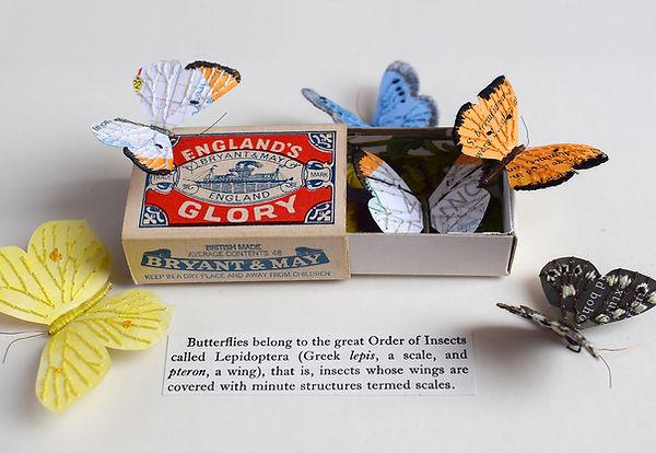 Butterfly Matchbox, paper sculpture by artist Kate Kato | Kasasagi