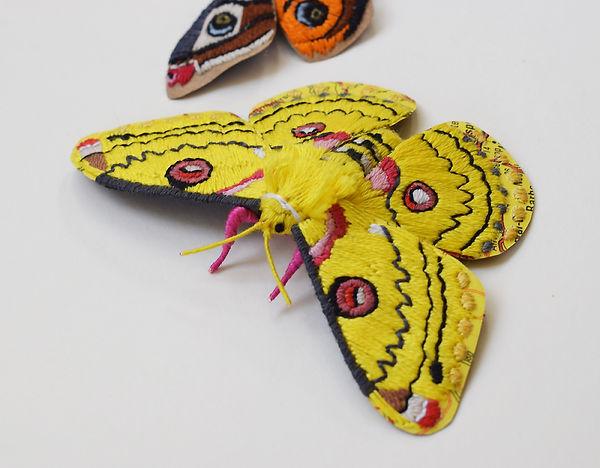 Paper Emperor Moth by artist Kate Kato   Kasasagi