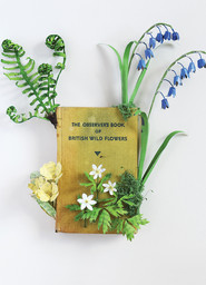 The Observer Book of British Wild Flowers (2017)