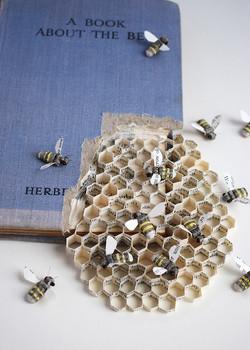 Bee Book 5