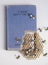 A Book About the Bee (2017)