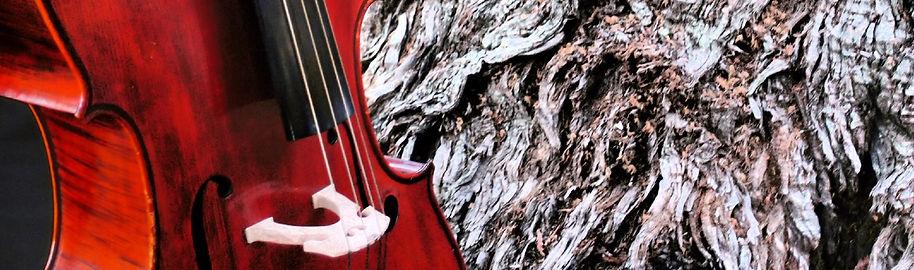 a Cellist and Cello Teacher in Hong Kong