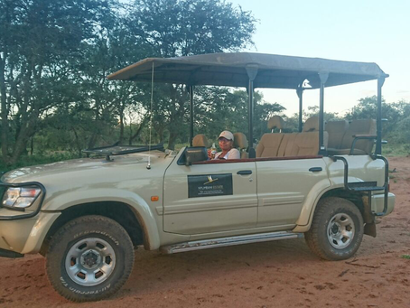 Game Viewers – what actually goes on that vehicle for a game drive?