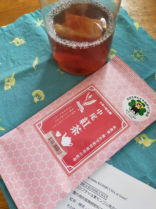 熊本県菊池産 自然栽培紅茶&コンブチャの作り方れしぴ( スコービー付き)
