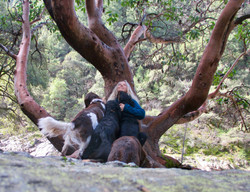 Catriona with Dogs at Tree
