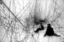 MIT CAST Spiderweb.jpg