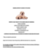 GUIDE DOGS FLYER 2020.png