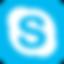 Thérapie en ligne via Skype