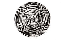 שטיח דגם ספארי