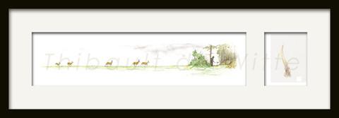 Chevreuils en approche + Bois