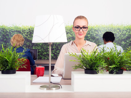 What does an environmentally sustainable office look like?
