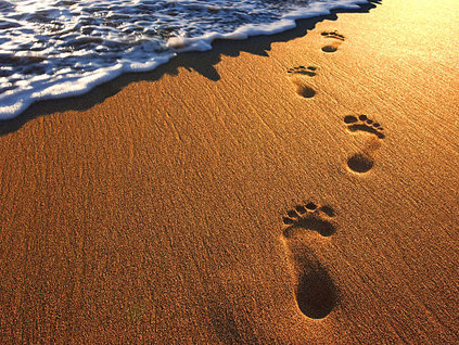 Learning to tread lightly - Reducing our ecological footprint
