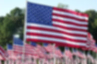 american-flags-trees.jpg