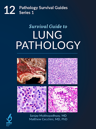 Lung Pathology.png