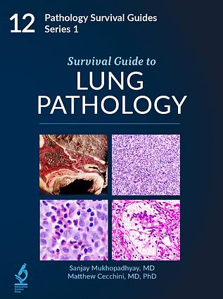 Lung Pathology.png