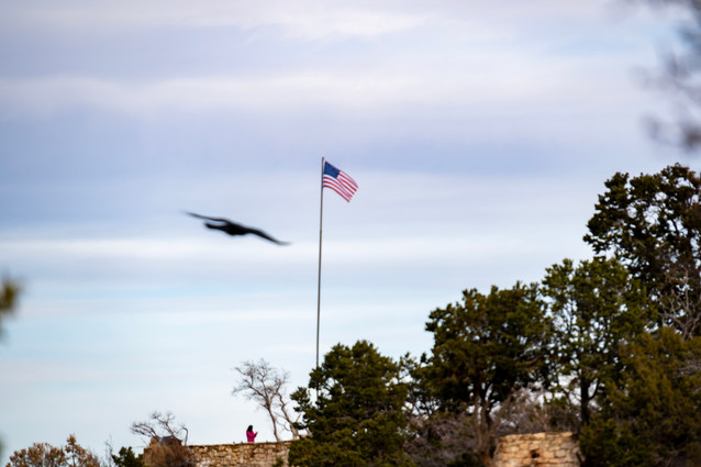 Sedona - Patriotic Bird.jpg