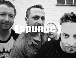 Sponge A.jpg