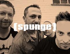 Sponge B.jpg