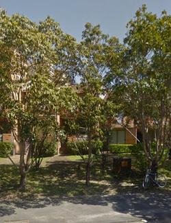 21 Eucalypt  Anzac Pde, Kensington