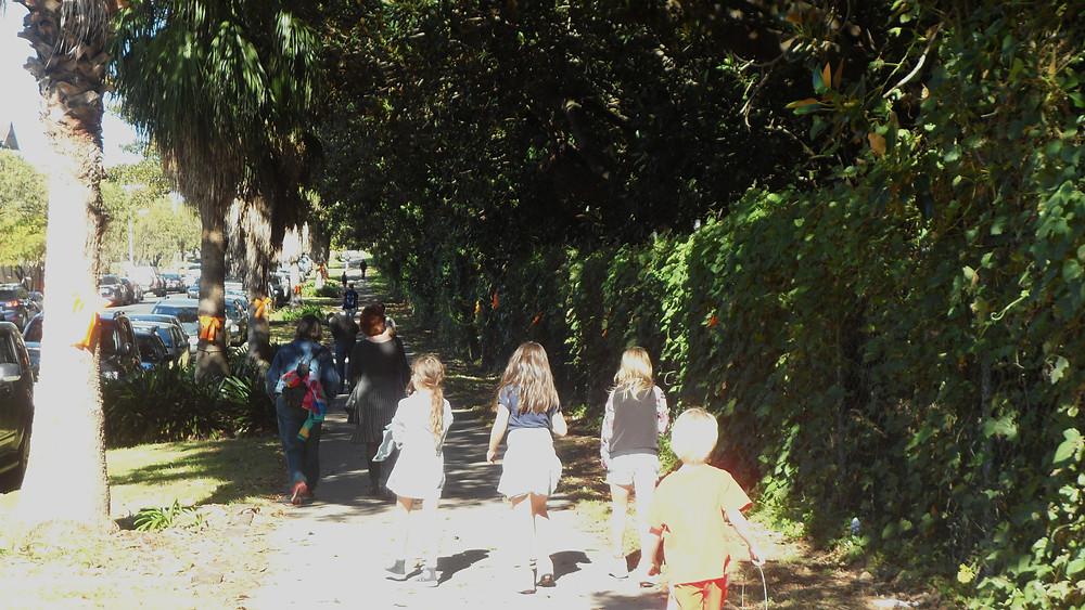 Wansey Road on Randwick Tree Walk for Tree Day, July 2014