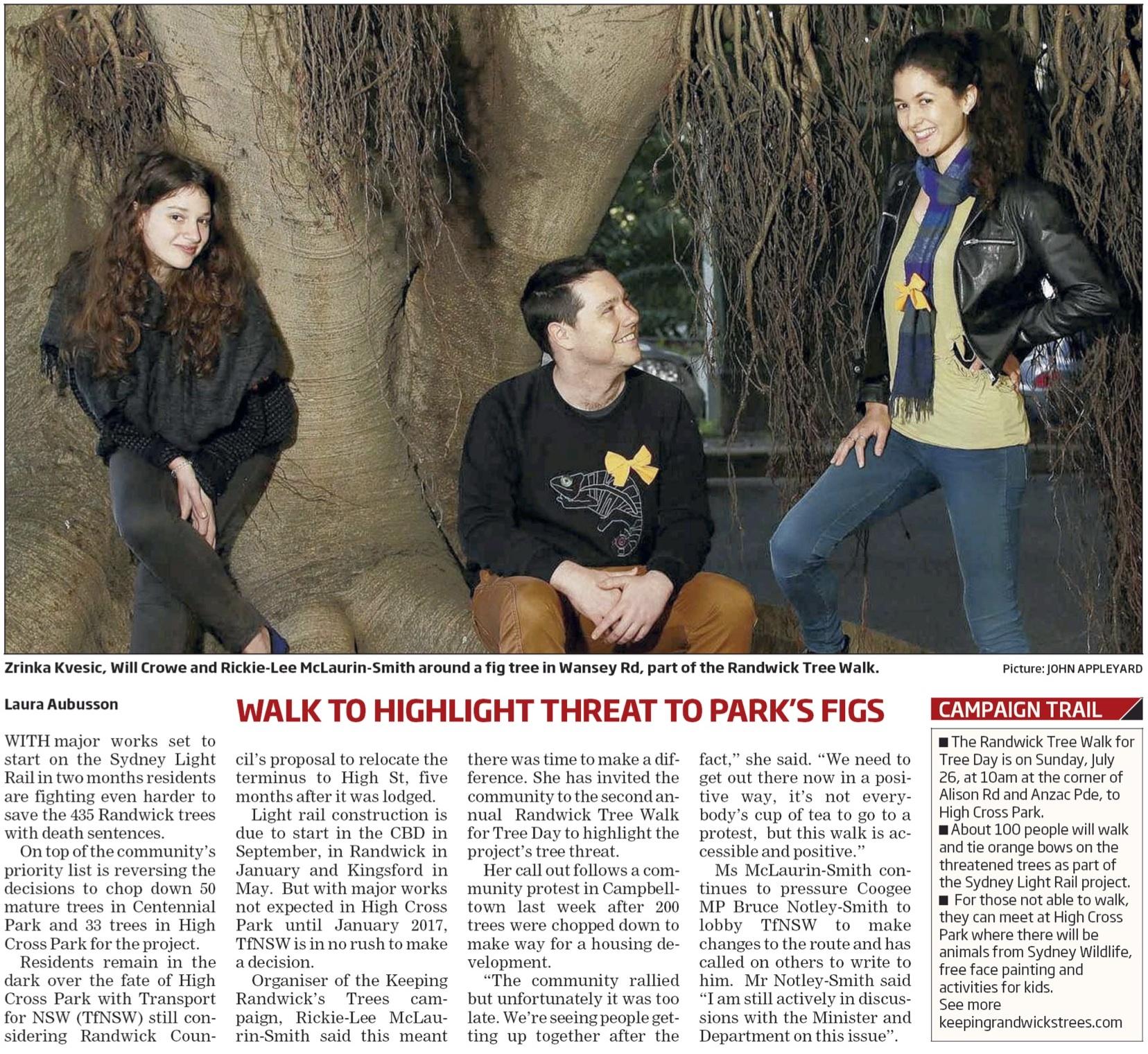 Randwick Tree Walk 2015 promo