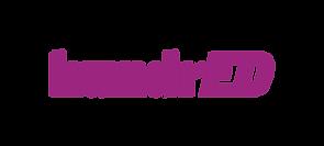 hundred_logo_purple - Mariah O'Mara.png