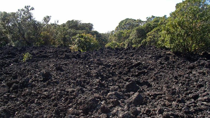 Rangitoto erkaltete Lava