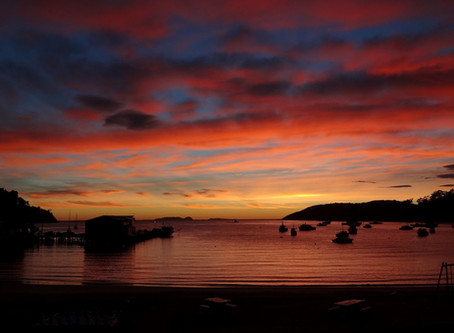 Stewart Island: Ein Geheimtipp für Naturliebhaber