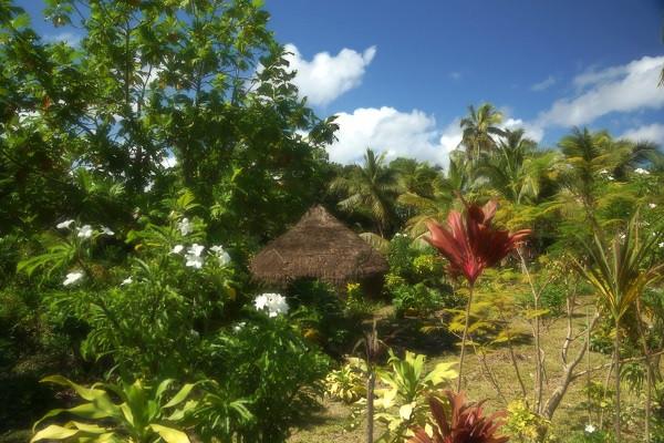 Kanak Hütte auf Lifou - Neukaledonien