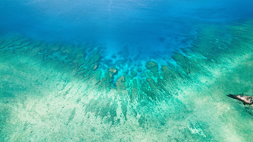 Blaue Lagune Japan.jpg