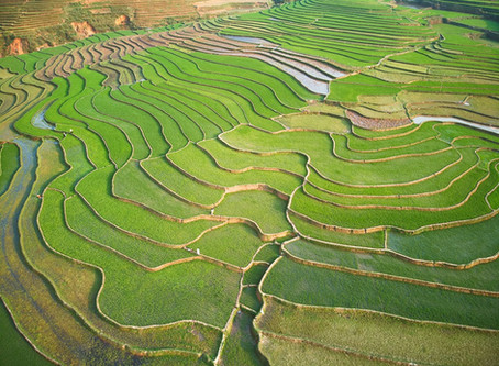 5 Sehenswürdigkeiten im Norden Vietnams