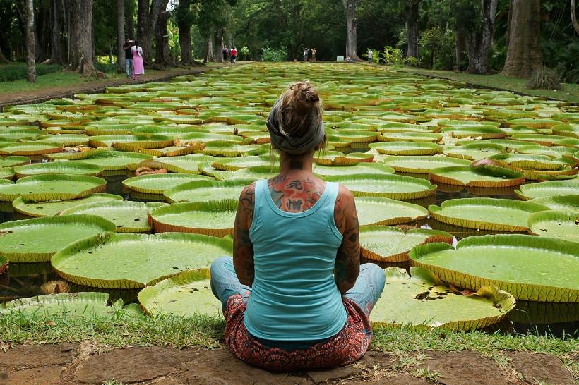 Botanischer Garten - Mauritius
