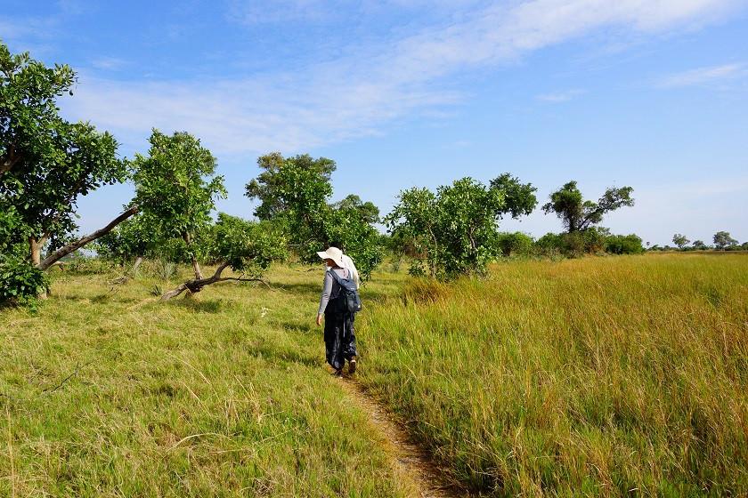 Bush Walk auf einer Insel im Okavango Delta