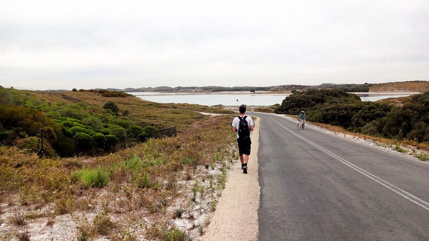 Hermann spaziert über eine Straße auf Rottnest Island